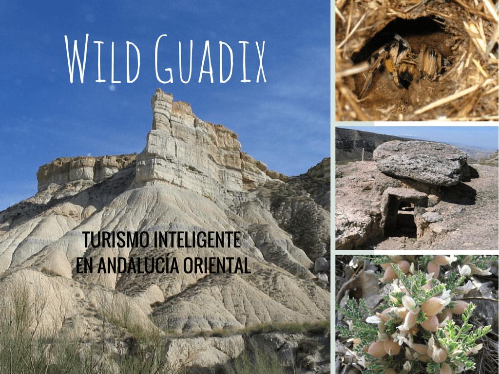 Wild Guadix. Diseño de productos turísticos personalizados para viajeros, alojamientos e instituciones en Andalucía Oriental