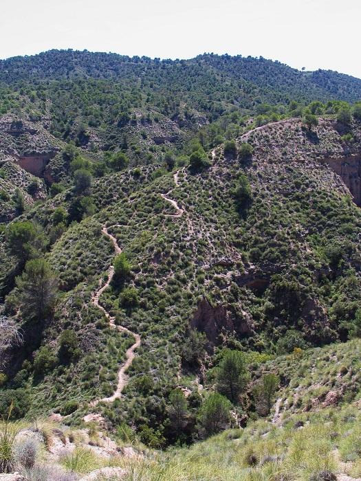ruta de Monte Pajarillo